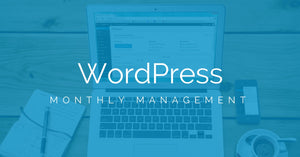 Unlimited WordPress Updates (Monthly)