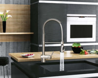 599 SS Kitchen Faucet With Pull-out Shower (Made In Italy)