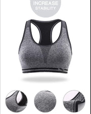 Black Stripe 3279 Sports & Jim,Yoga Padded Wirefree Bra For Ladies -Girls Sports Bra - By Lubunie