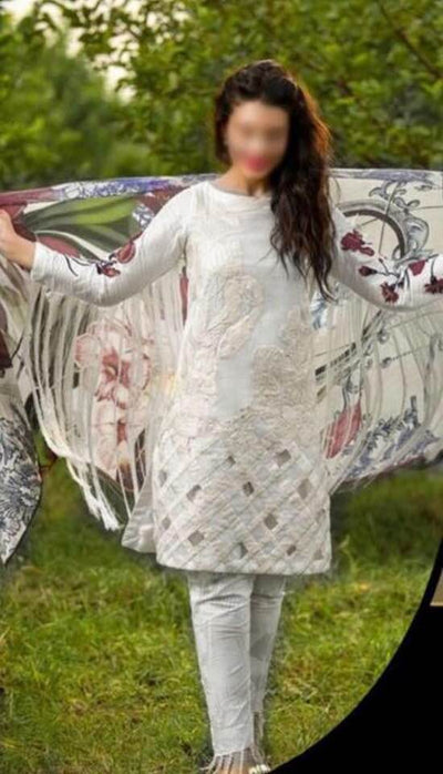 Asifa & Nabeel Cotton Net Dresses - Embroidered Cotton Dupatta - Replica - Unstitched