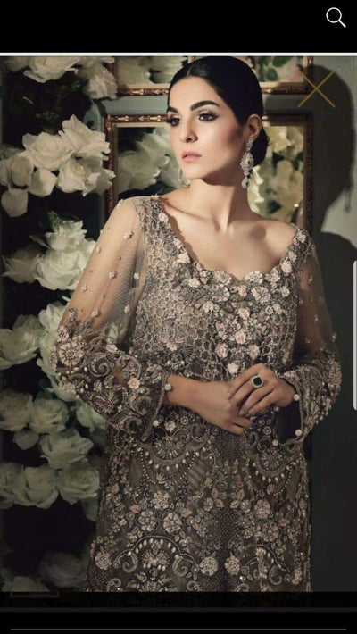 Maria B Chiffon Collection 2020 Wedding  Dresses