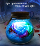 Creatively Romantic Bulb Rose Flower Bottle LED Home Dimmer Lamp