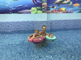 Premium Baby Swim Trainer Float