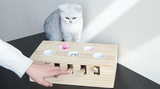 Funny Cat Whack Toy