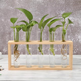 Plant Terrarium With Wooden Stand (Garden/Home Decor)