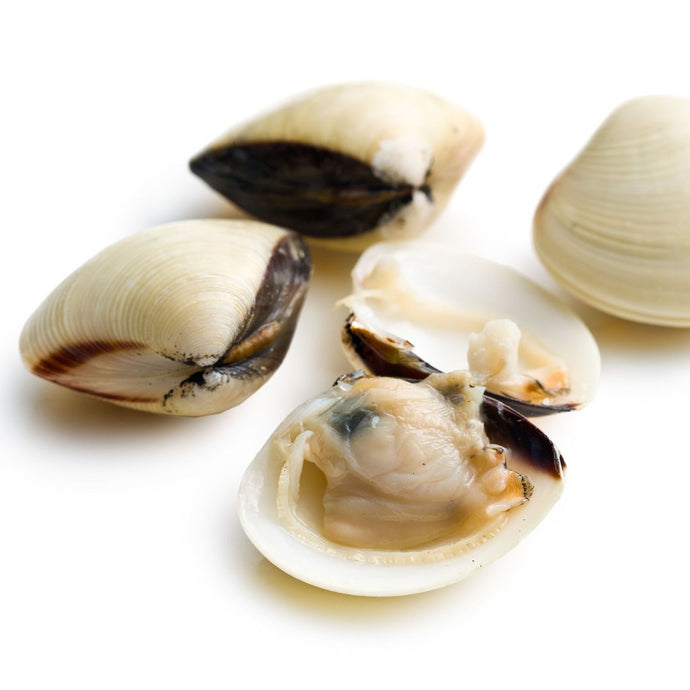 frozen whole white clams