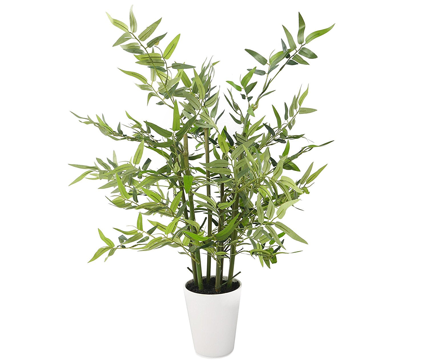 "Closer2Nature Artificial 2ft 3"" Green Bisset's Bamboo Tree in a Decorative White Pot"
