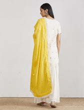 Load image into Gallery viewer, IVORY & YELLOW CRUSHED GHARARA SET