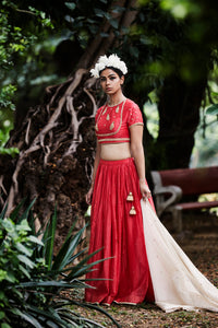 PLEATED SKIRT, MUGHAL FLORAL BLOUSE & TISSUE DUPATTA