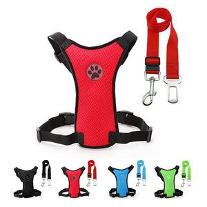 PAWS™ DOG SEAT SAFETY BELT - Big Red