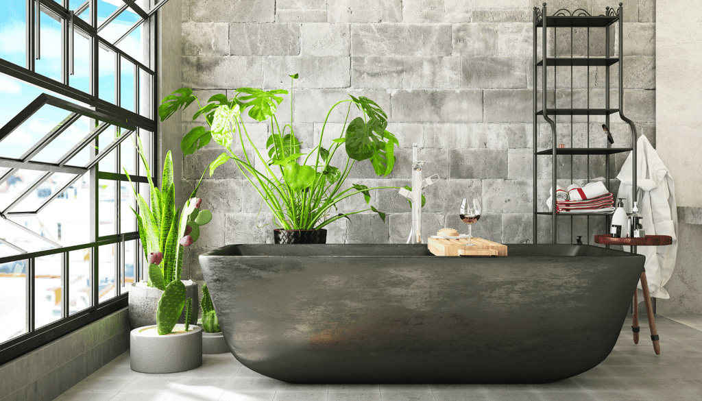 Air purifying plants in the bathroom