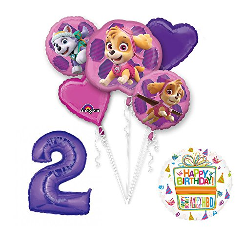 PAW PATROL SKYE & EVEREST 2nd Birthday Party Balloons Decoration Supplies Chase Ryder by Mayflower Products