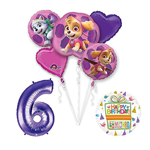 PAW PATROL SKYE & EVEREST 6th Birthday Party Balloons Decoration Supplies Chase Ryder