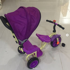 Tricycle With Sunroof For Kids