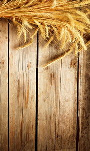 Wheat Photography Background