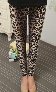 Hearts Tiger  Leggings - Crateen