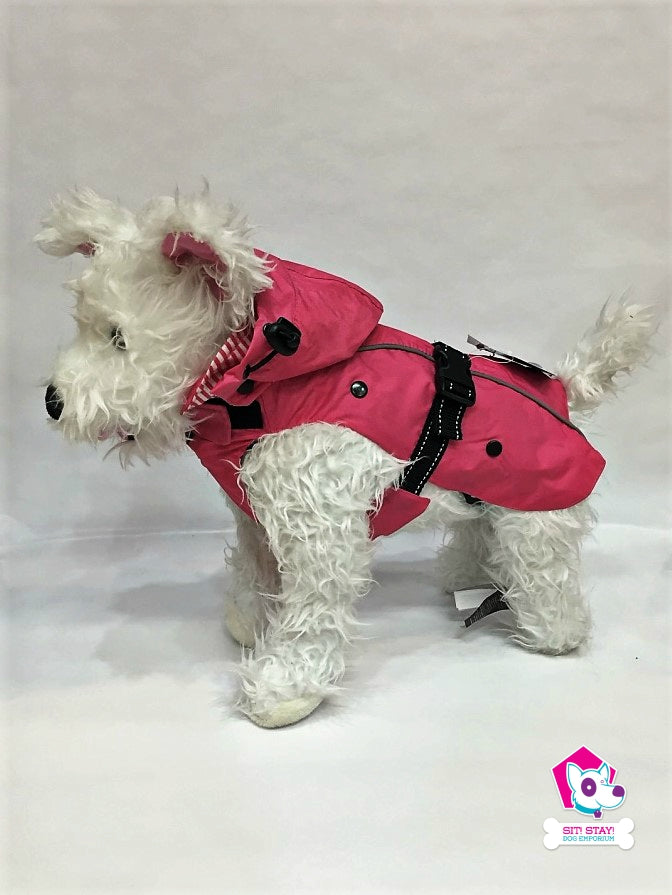 All-Weather Dog Coat