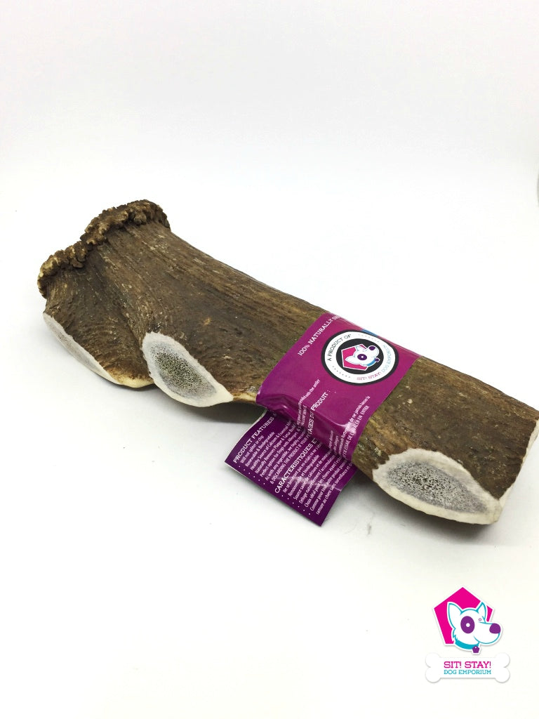 Sit! Stay! Elk Antler Dog Chew Jumbo