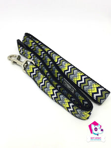 "Soho Leash 1""x6'"