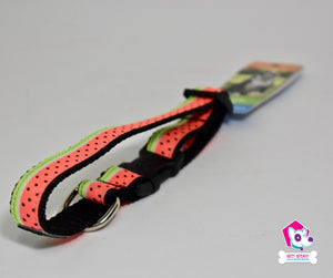 Clip Collar Watermelon