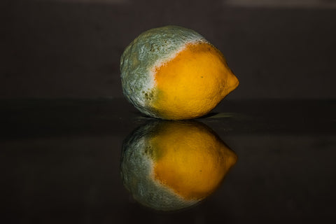 lemon oxidation