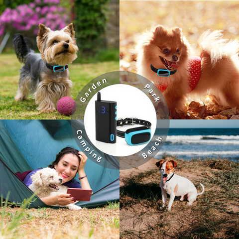 training small dogs can be difficult – but it is much easier when using the best bark collar for small dogs