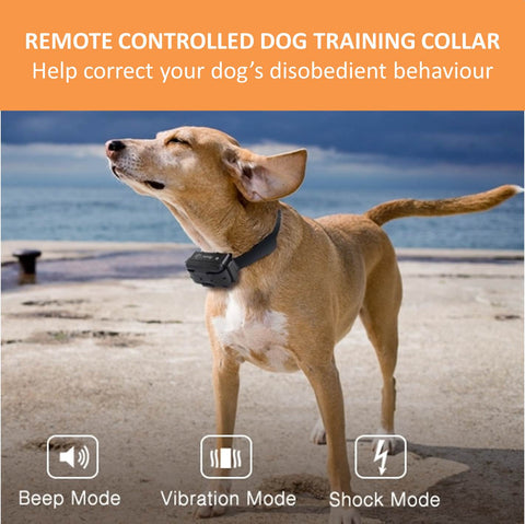 Best dog training shock collar with remote control to help your dog small or large behave in any situation