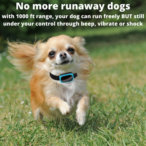 Small dogs love to bark, but our no bark collar for small dogs, means you can train them easily and quickly using one of the three safe and effective operating modes without harming your dog