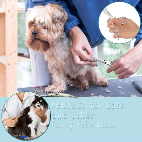 This pet grooming set is perfect for both dogs and cats – the cat comb will help you keep your furry cats neats and remove knots and matts from their coat, while the thinning shears for dogs will help ensure that all your four legged pets are kepts neat and tidy.