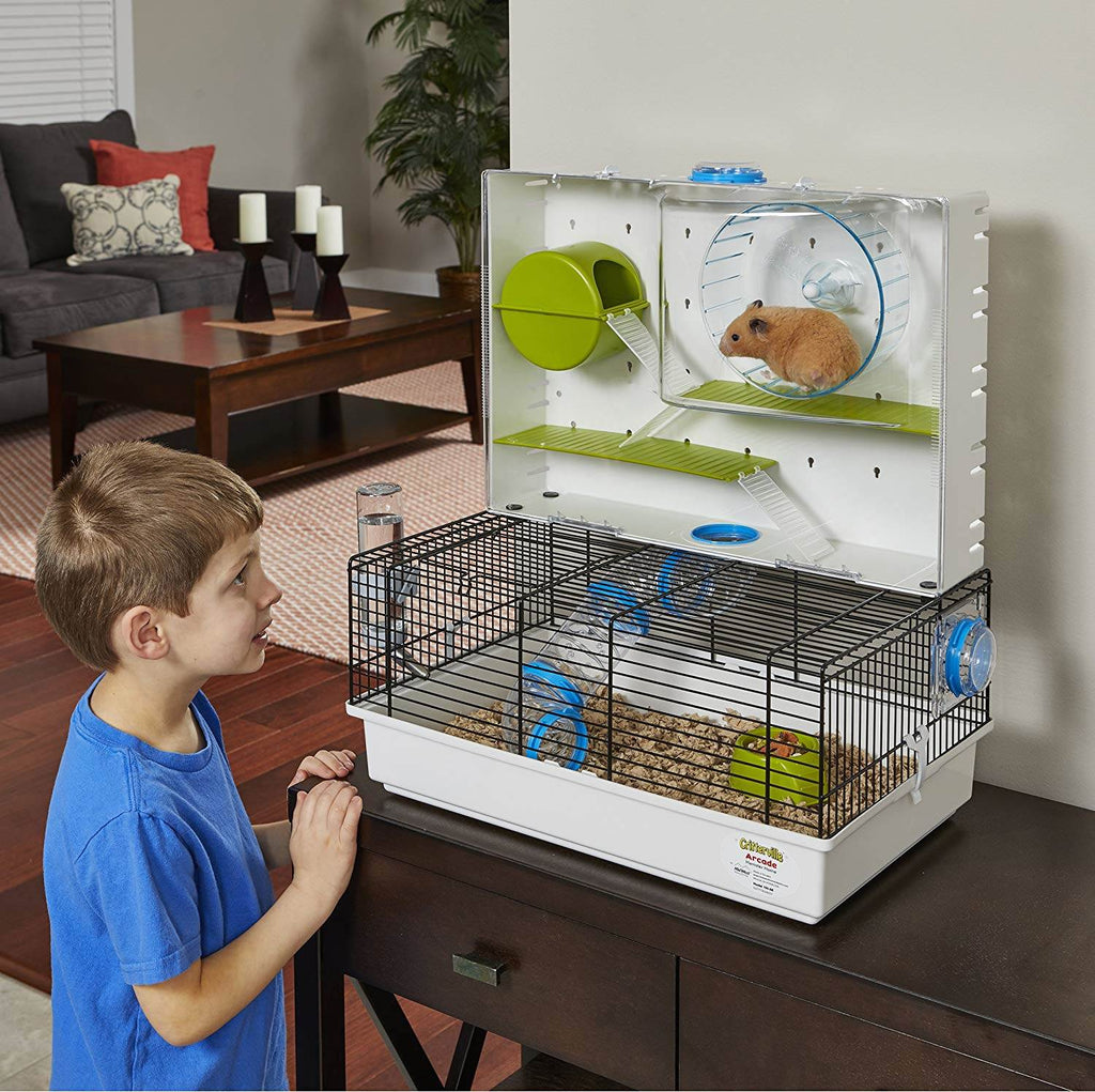Have hours of entertainment watching your hamster exercise and love his hamster run