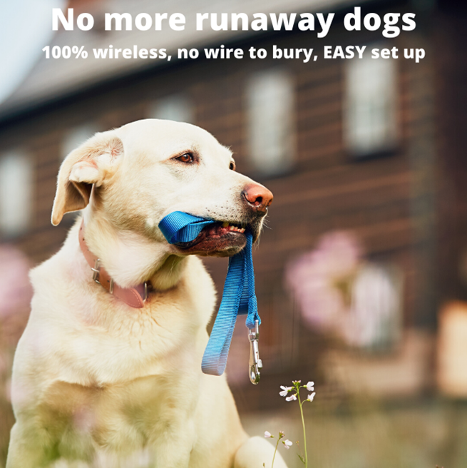 No more run away dogs with this stay and play wireless fence – let your dogs run in and play in the garden without worrying about their safety