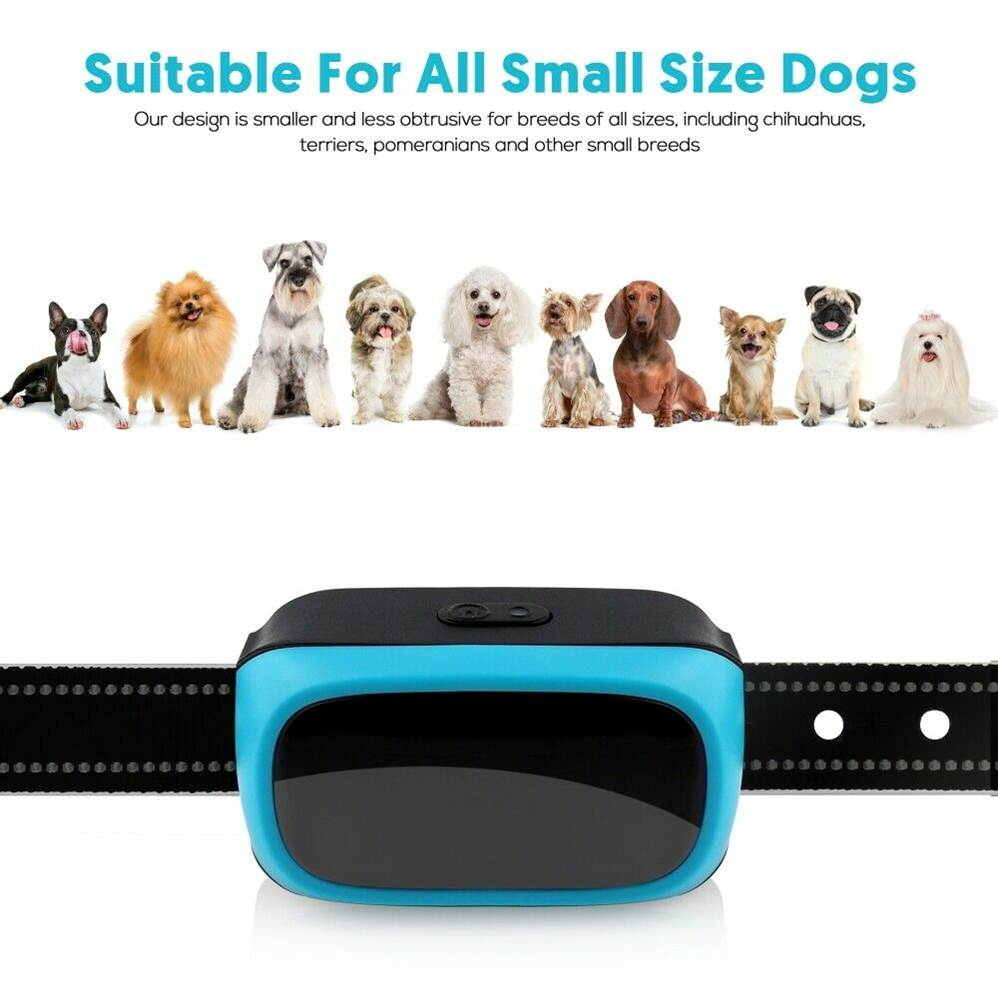 Best stop barking collar for small dogs, making it quick and easy for them to learn how to behave.  Best for dogs weighing between 10 and 20 pounds.