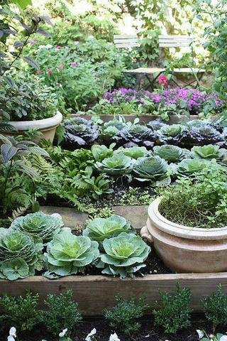 American Summer: Kitchen Gardens