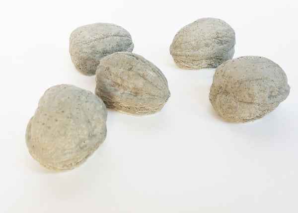 Decorative Concrete Walnuts Set Of Five Home Decor Accents