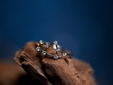 Sagittarius Constellations Ring