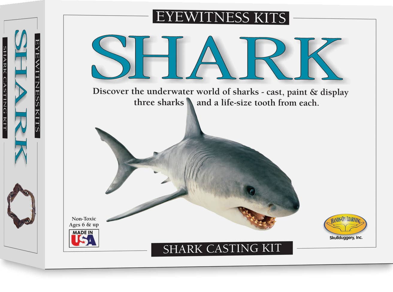 Outer box of Eyewitness Kit showing shark mold activity Learn fascinating facts about sharks make your own models verbiage