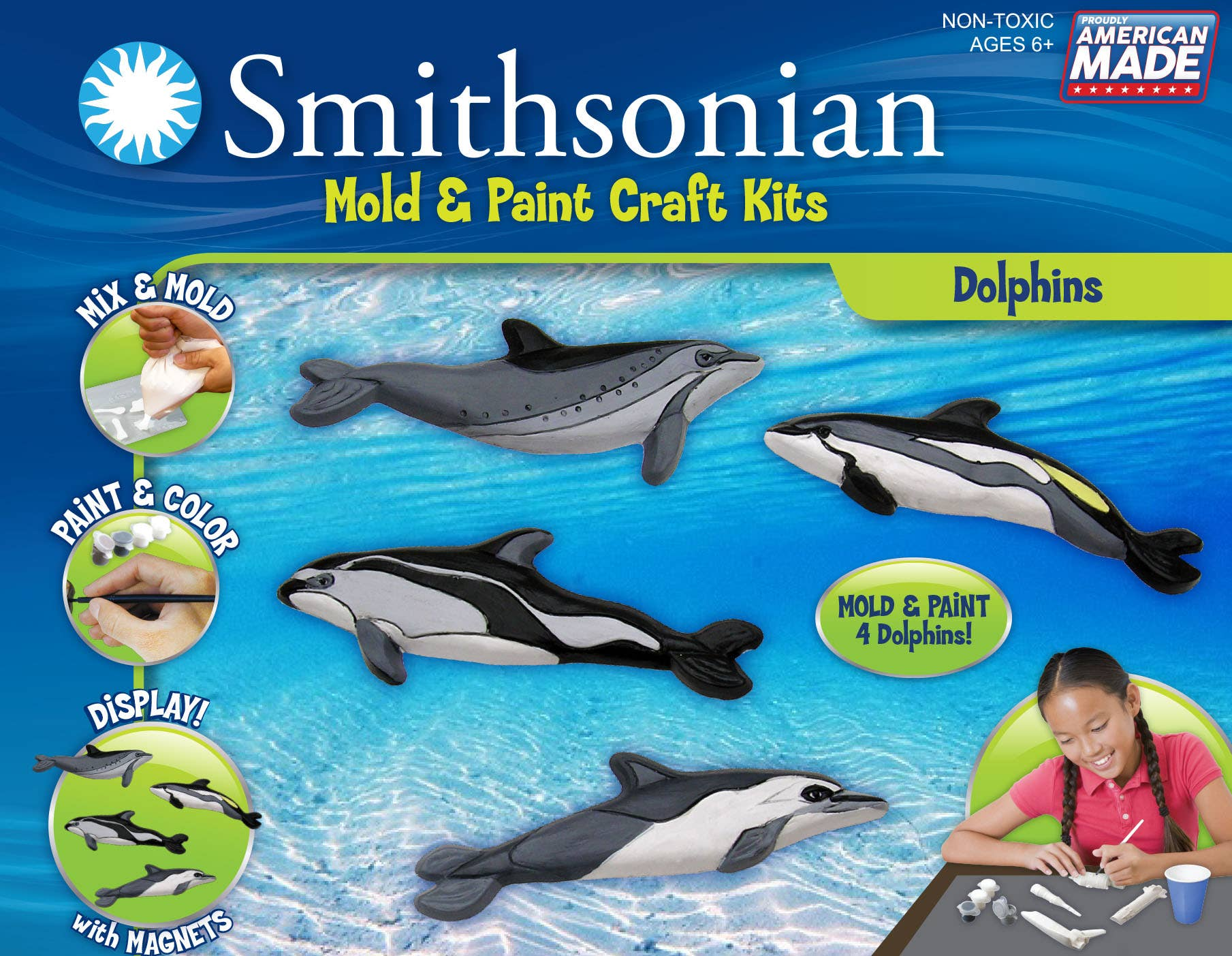 Smithsonian mold and paint dolphin kit for kids with four cast dolphins with magnet backing for displaying the arts and crafts