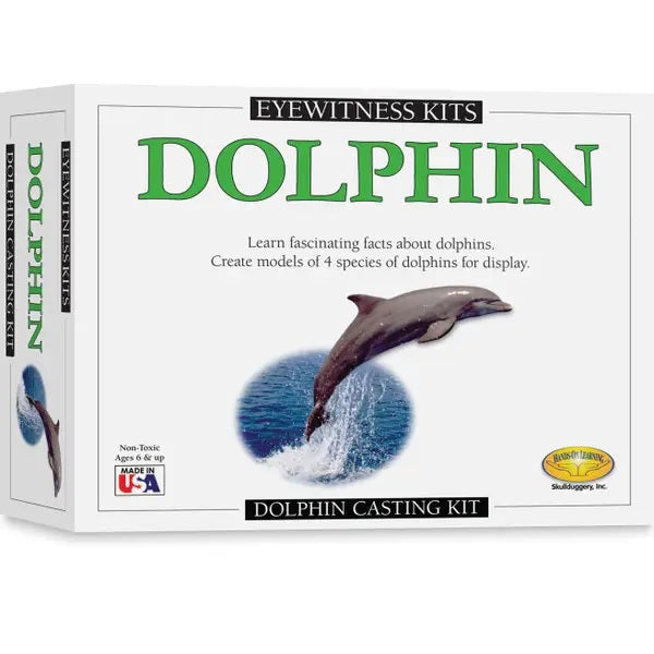 Outer box of Eyewitness Kit showing dolphin mold activity Learn fascinating facts about dolphins make your own models verbiage