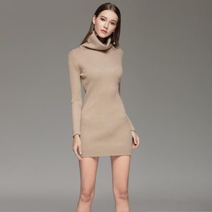 Turtleneck Ribbed Knit Dress