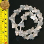 "Natural White Shell Beads 15-16"" strand - Butterfly 15x12mm"