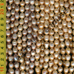 [#F] Freshwater Pearls 9x11mm Barrow Pink / Light Pink / Peach Colour