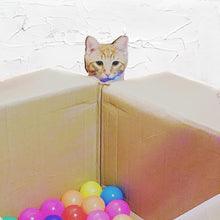 Load image into Gallery viewer, Kitty Play Balls