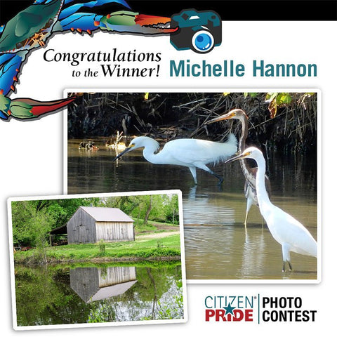 "We LOVE announcing the winner for her two shots: ""Great Egrets and a Tricolored Heron at Mayo Beach Park in Edgewater, MD"" and ""Paris N. Glendening Nature Preserve."" Two, beautiful scenes of what makes Michelle proud of her home... Maryland."