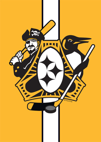 Pittsburgh Three Rivers Roar Sports Fan Crest Garden Flag, 12x18