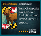 Review of Maryland Chessie House Flag by Joe Barsin,