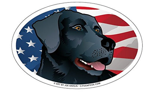 USA Black Lab Oval Magnet, 6x4
