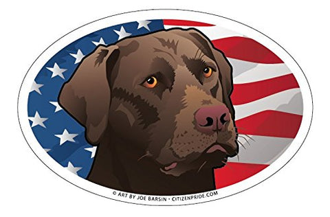 USA Chocolate Lab Oval Magnet, 6x4