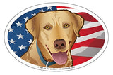 USA Yellow Lab Oval Magnet, 6x4