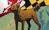 Maryland Chessie Door Mat by Joe Barsin, 30x18, Chesapeake Bay Retriever