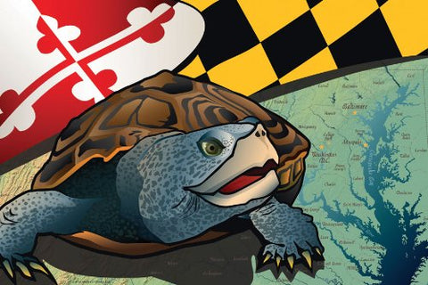 Maryland Terrapin Art Print by Joe Barsin, 16x12